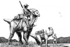 Pacyosaurus